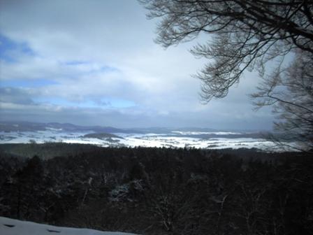 Winterliche Aussicht vom Christenberg nach Nordwesten